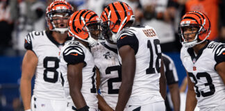 2020 Cincinnati Bengals Wide Receivers