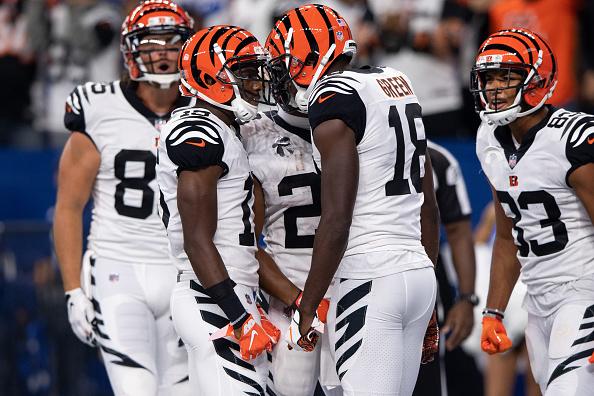 2020 Cincinnati Bengals Wide Receivers