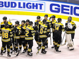 bruins are back