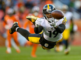 Steelers Free Agency